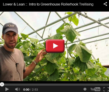 How to Lower & Lean Your Vines