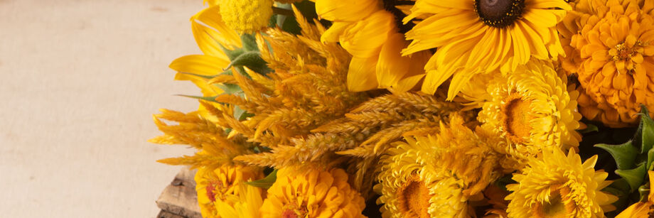 A bouquet of gold flowers, including zinnia, sunflowers, and celosia.