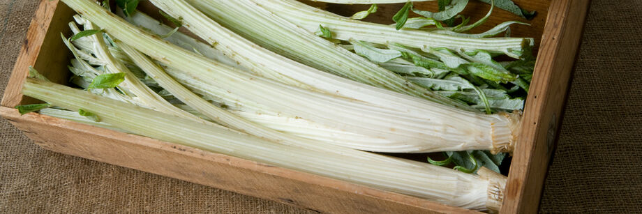 Cardoon stems in a wooden box.