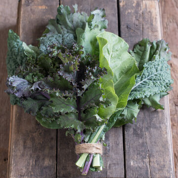 Baby & Bunching Kale