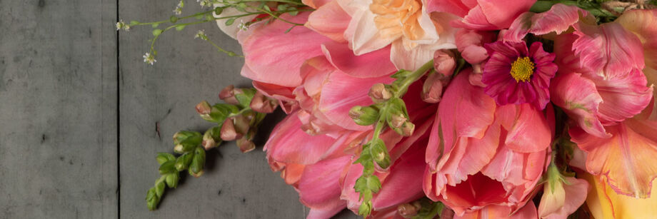 Bouquet of flowers in shades of pink and coral.