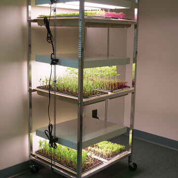 Grow Lights & Carts