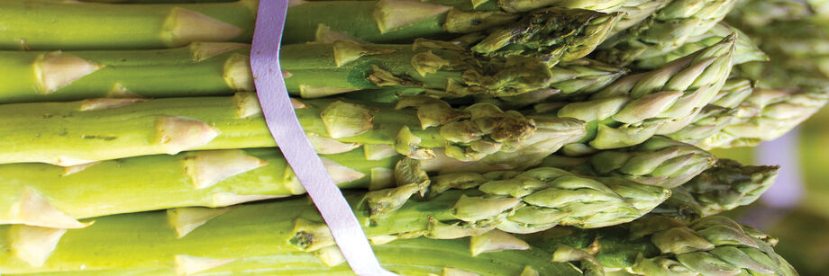 A bundle of one of the green asparagus varieties offered by Johnny's.