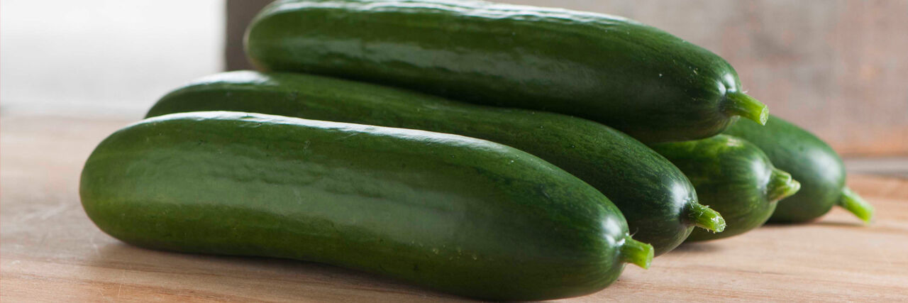 VEGETABLE CUCUMBER BETH ALPHA 100 SEEDS Selected seeds