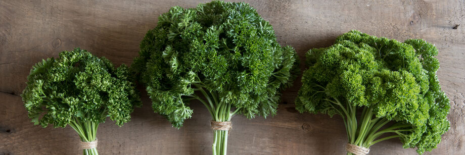 Three of our parsley varieties, bunched and displayed on a wood board.