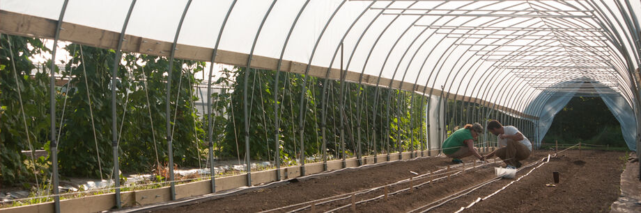 Greenhouse and Tunnel Supplies