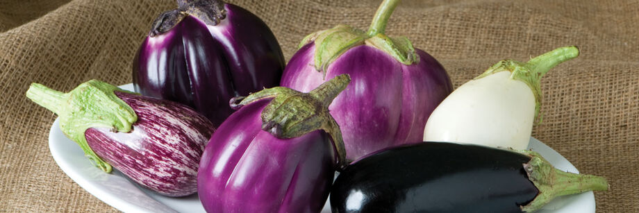 The fruits of six of Johnny's eggplant varieties. There is a range of colors, from deep purple, to variegated, to white.