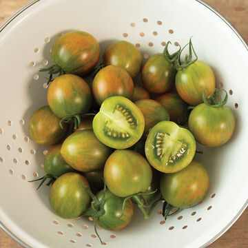 NEW Tomatoes