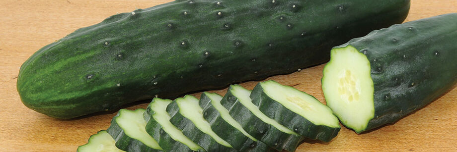 Field-Grown Cucumbers