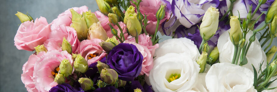Bouquet of pink, purple, and white rose-like blooms grown from our lisianthus varieties.