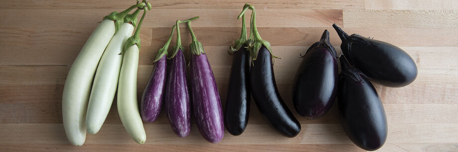 The fruits of 4 different mini-eggplant varieties laid out on a table. The colors are white, variegated, and deep purple.