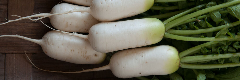 Several oblong white daikon radishes.