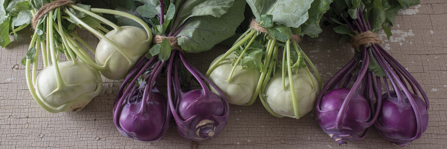 Four bunches of kohlrabi from Johnny's white and purple kohlrabi varieties.