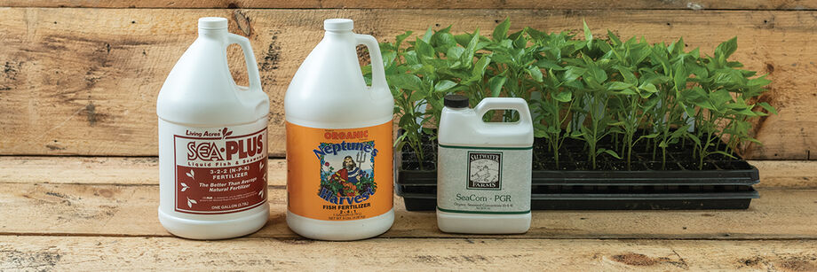 Three containers of fish and seaweed-based organic fertilizers displayed next to a tray of seedlings.