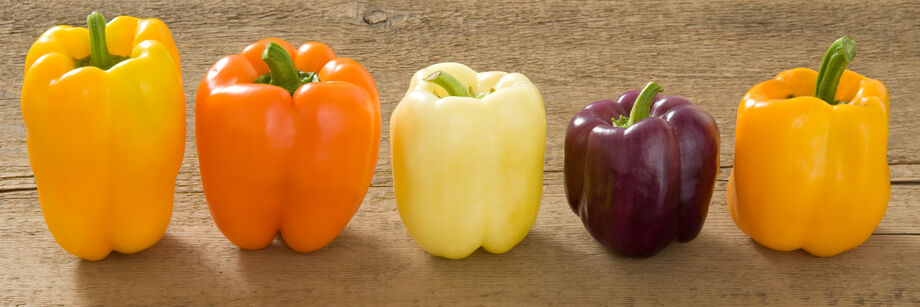 Five bell peppers: two yellow, one white, and one purple variety.