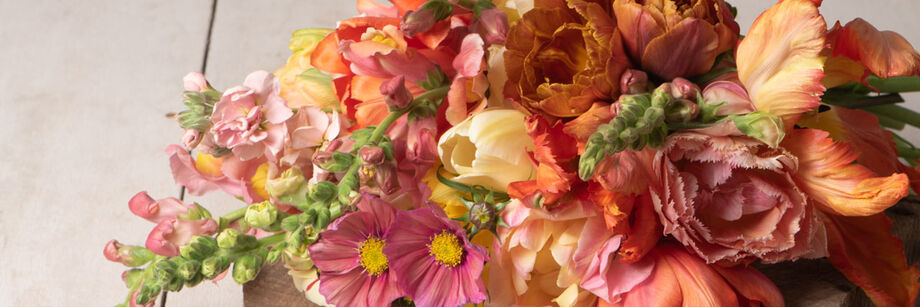 A bouquet of flowers in bright red, pink, and orange colors.