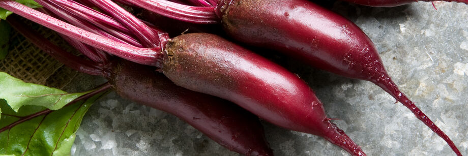A bunch of red, cylindrical beets.