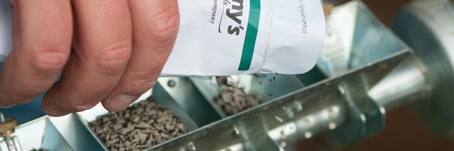 Close up of someone pouring seed into a seeder.