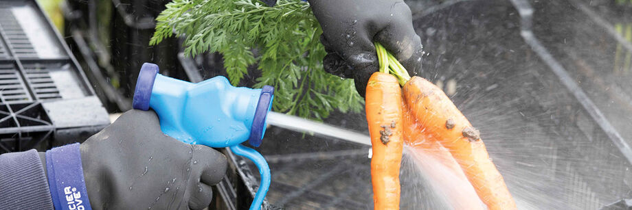 Person wearing our cold weather wash station gloves and spraying down carrots using our wash down gun.
