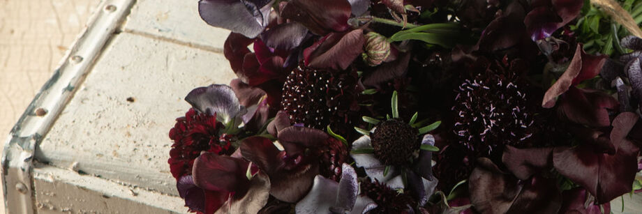 Bouquet of flowers in deep maroon, almost black shades.