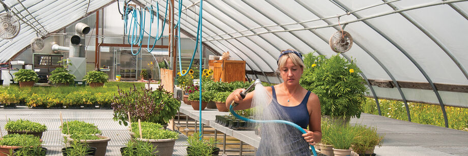 Over-Head Watering Systems