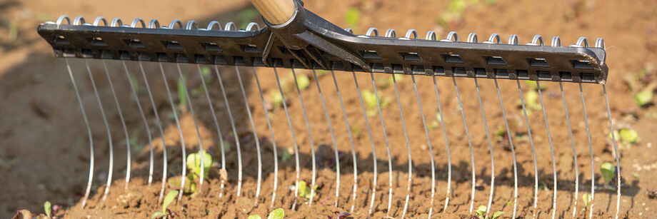 A tine weeder in action.
