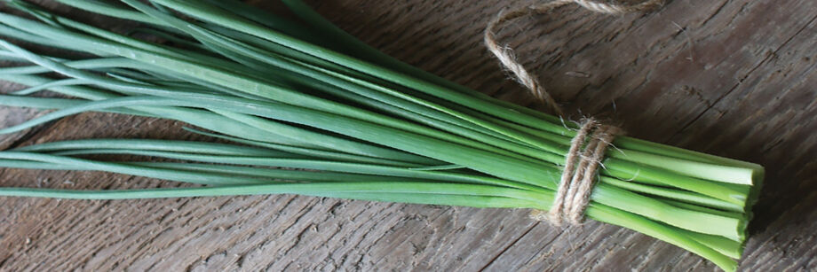 A bundle of chives, tied with twine.