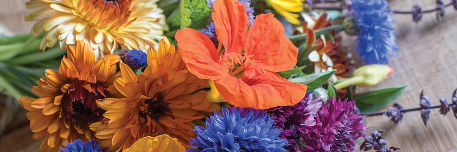 A bouquet with orange, blue, and purple flowers grown from one of Johnny's flower seed mixes.