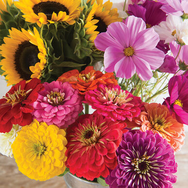 Cut Flower Kit for Market Growers Flower Collections and Mixes