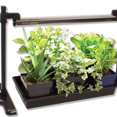 Strip Light Stand Grow Lights and Carts