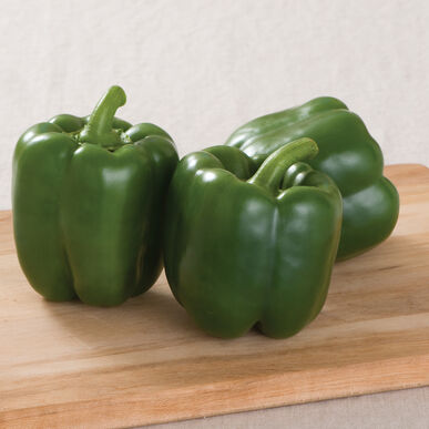 Intruder Sweet Bell Peppers