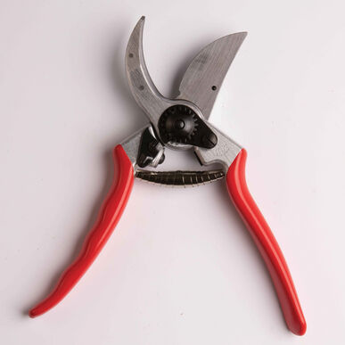 Felco No. 2 Pruning Shears Cut-Flower Supplies