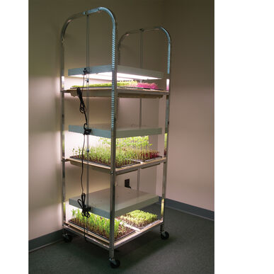 Compact Seedling Light Cart – 6 Trays, 120 Watts Grow Lights and Carts