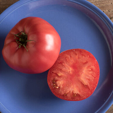 Brandywine Heirloom Tomatoes