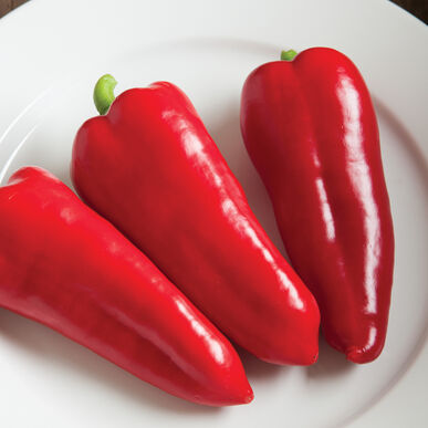 Cornito Rosso Sweet Peppers