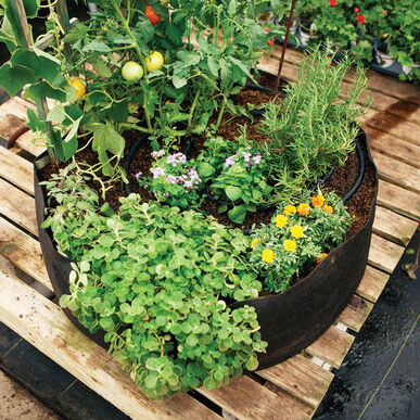 Big Bag Bed – Mini Raised Beds & Planters