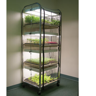 Humidity Tent Grow Lights and Carts