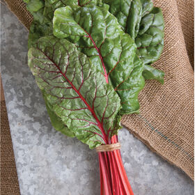 Ruby Red or Rhubarb Chard Swiss Chard
