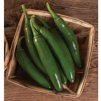 Altiplano Hot Peppers