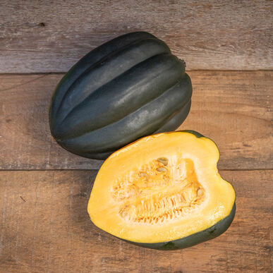 Autumn Delight Winter Squash