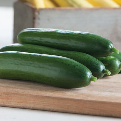 Diva Seedless and Thin-skinned Cucumbers