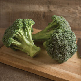 Green Magic Standard Broccoli