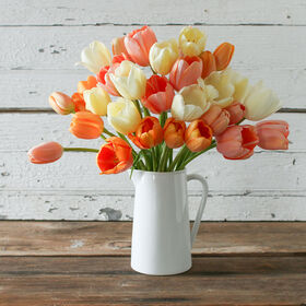 French Tulip Set Sets
