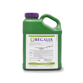 Regalia® CG – 1 Gal. Fungicides