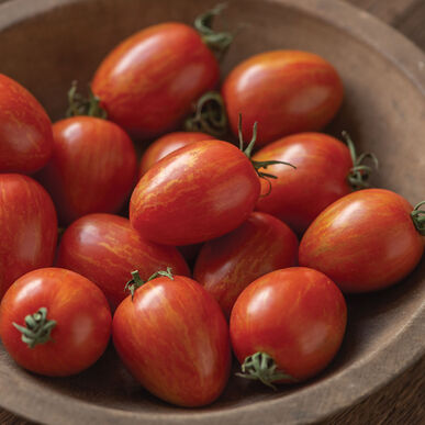 Red Torch Specialty Tomatoes