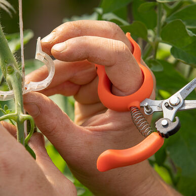 Hands-Free Pruning Scissors – Stainless Steel Shears and Pruners