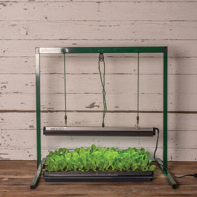 Value Jump Start – 2' Grow Lights and Carts