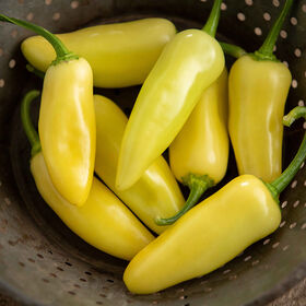 Arriba Hot Peppers