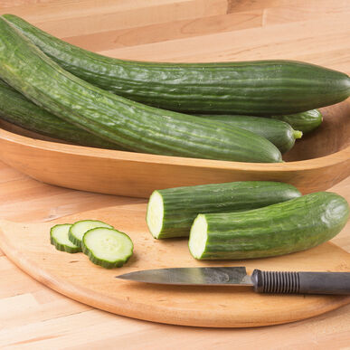 Poniente Seedless and Thin-skinned Cucumbers