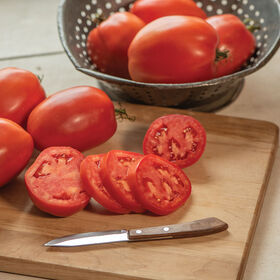 Cipolla's Pride Heirloom Tomatoes
